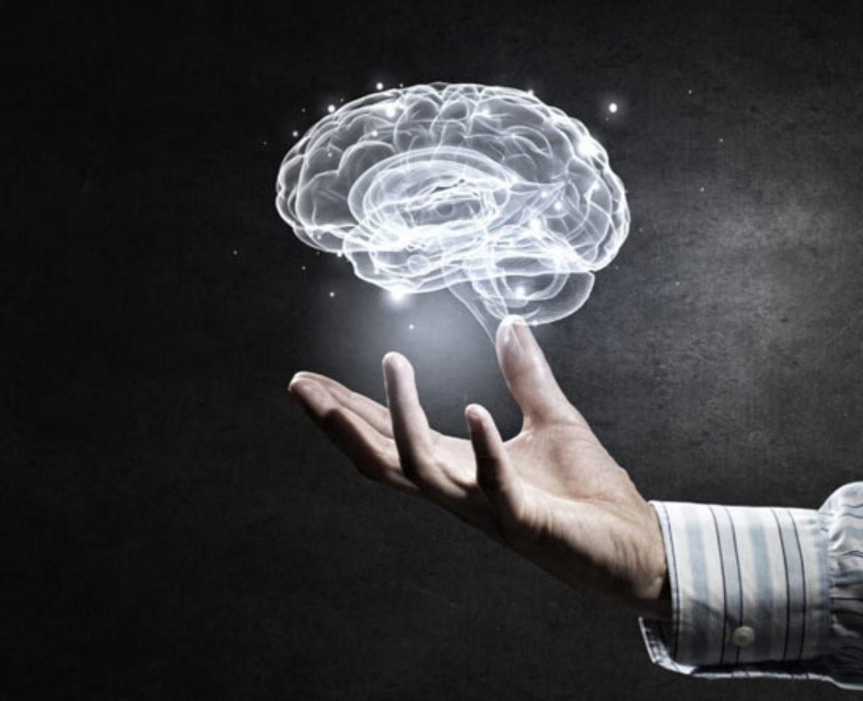 Als hersenen groeien, dan groeit talent-deel 2